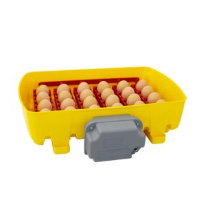 Incubatrice digitale 24 uova gallina con girauova