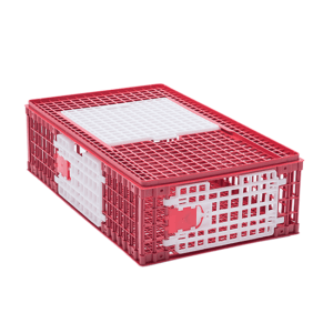 Small plastic crate for chicken transportation with upper sliding door, front door and side door, item no. 1512-01